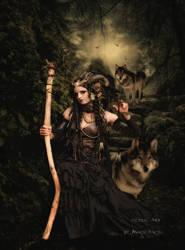 Wolfs Night by MagicAngel8773