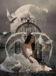 Angel Of Birds by MagicAngel8773