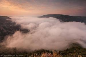Snake mist by Annabelle-Chabert