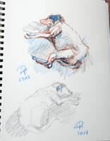 Dog oil pastel sketch by TheAjsAx