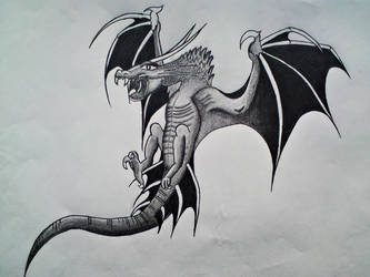 Dragon/ Drache by Elli-Fu