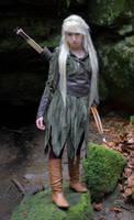 Mirkwood Elf by Liancary-art