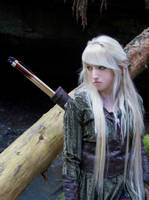 Mirkwood Elf 10 by Liancary-art