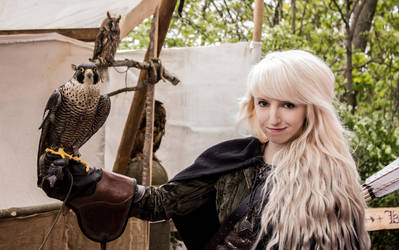 Alethya and the falcon - stock 2 by Liancary-art