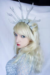 Ice Queen - Stock by Liancary-art