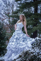 Ice bride - stock 2 by Liancary-art