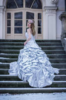Wedding Dress 2 by Liancary-art