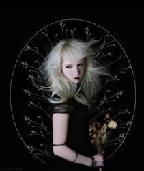 Moon Saga: New Moon by Liancary-art