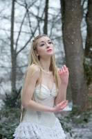 Winter Serenade - Stock by Liancary-art