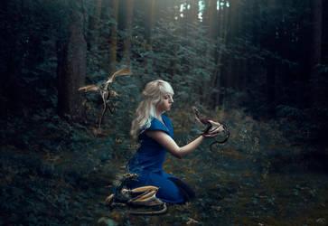 The Secret Dragon Grove by Liancary-art