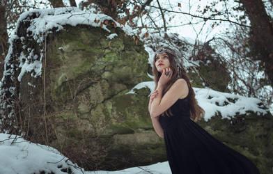 January stock 1 by Liancary-art