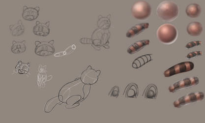 1st Cartoon Raccoon Sketches by Tom437