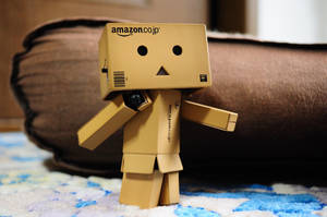 Danbo- walk by aoieu