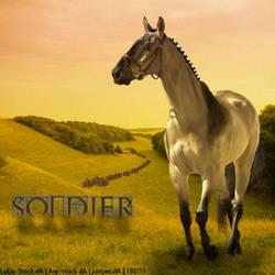 Soldier - HEE by FulllStop
