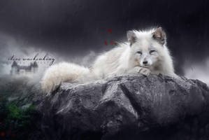 Darkwood Fox by SteveWackenKing