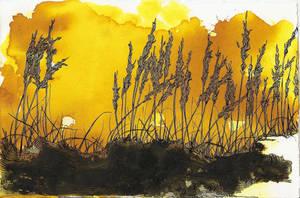 Wheat Impression by MelusineMcEwan