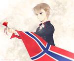 Norge 2013 by tina-Kazusa