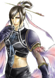 Dynasty Warriors6 Mr.Butterfly by stvictoria