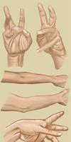 Hand Studies II by BikerScout