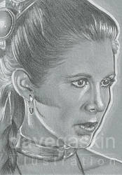 068/365 - Princess Leia by BikerScout