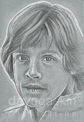 070/365 - Luke Skywalker by BikerScout