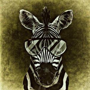 babu74's Profile Picture