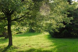 Meadow 1 by elanordh-stock