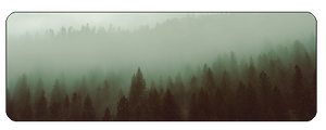 F2u Foggy Forest by JERE-AQUATIC