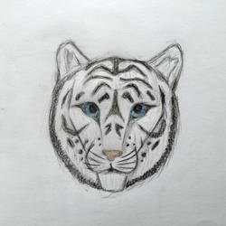 White tiger  by shyrox7