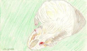 Marshmallow 1 by Aemiis-Zoo