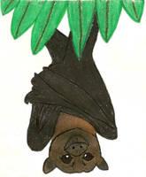 Batty Mango Seed 1 revised by Aemiis-Zoo