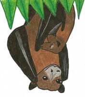Batty Mango Seed 3 by Aemiis-Zoo