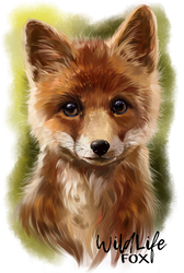 Fox by Kajenna