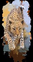 Leopard by Kajenna