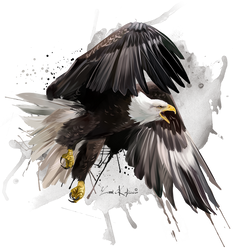 Eagle by Kajenna