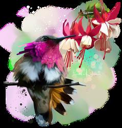 Hummingbird by Kajenna