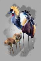 Crowned crane by Kajenna