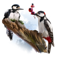Woodpeckers by Kajenna