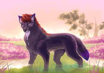 Roukara Commission by WindSwirl