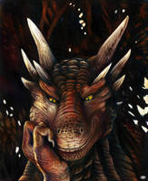 Draco by KatePfeilschiefter