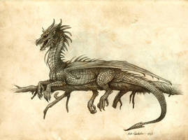 Draco Occidentalis Flammeus by KatePfeilschiefter