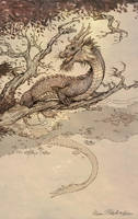 Year of the Water Dragon by KatePfeilschiefter