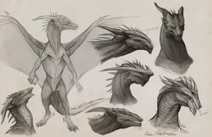 Sapient Dragon Sketches by KatePfeilschiefter