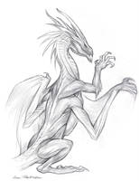 Dragon Dorsal Musculature by KatePfeilschiefter