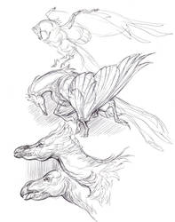 Winged Horses by KatePfeilschiefter