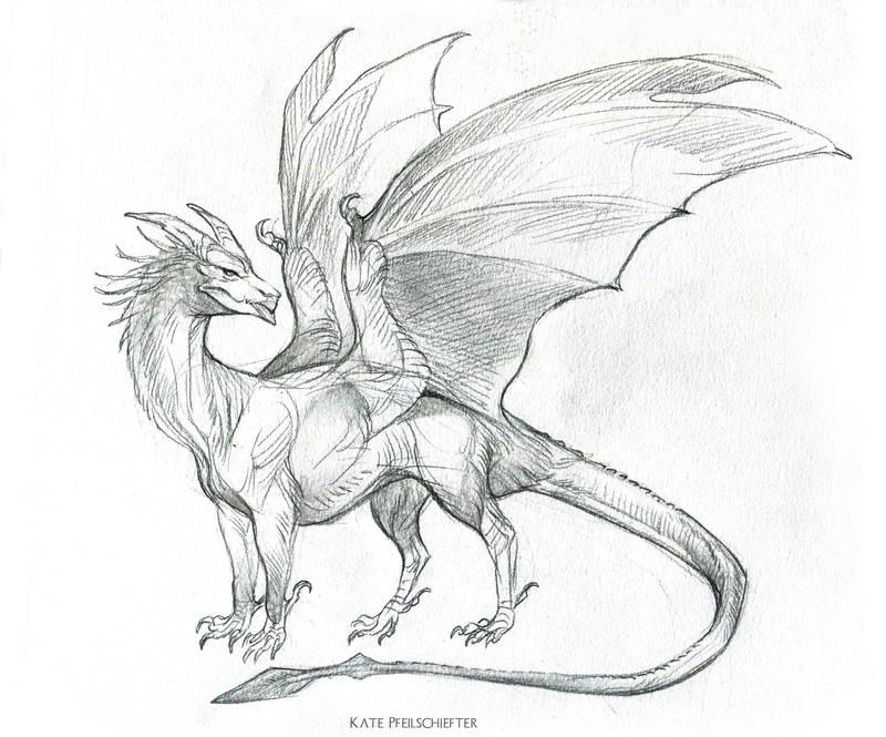 YiQi Dragon by KatePfeilschiefter