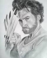 Logan/Wolverine by alix87