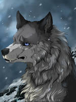 Completed YCH: Loner Wolf by ArthasElric
