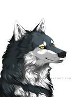 Shiro by ArthasElric