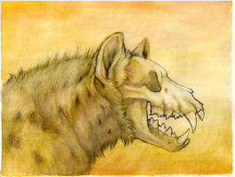 Hyenabones by synnabar